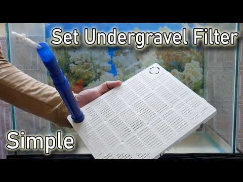 How To Set Undergravel Filter For Fish Tank