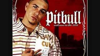 pitbull ft lil flip-dammit man remix
