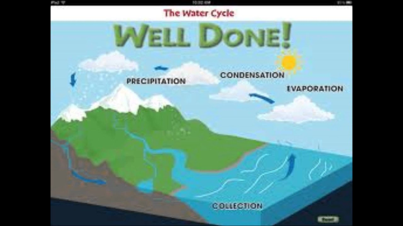 Water Cycle: The Water Cycle Song