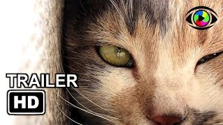 KEDI Trailer (2017) | Documentary Movie