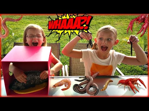WHAT'S IN THE BOX CHALLENGE - Magic Box Toys Collector