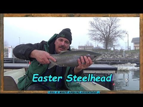 Easter Steelhead & Largemouth Bass Fishing At The Small Boat Harbor