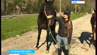 Конный спорт в Сочи