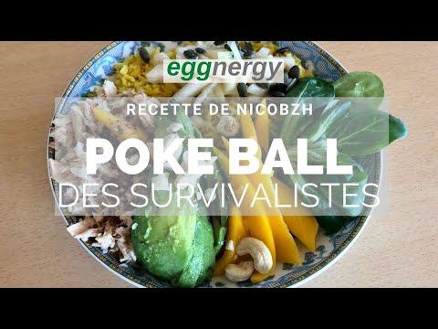 Poke Ball des Survivalistes par le chef NicoBZH