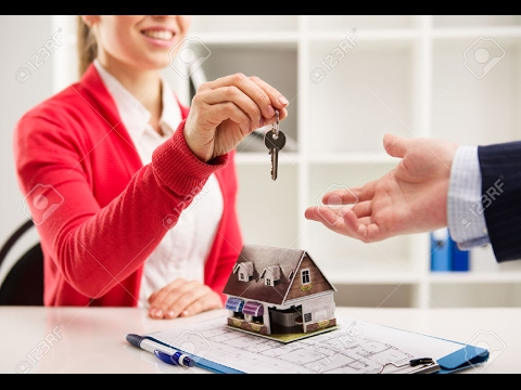 What to Expect As A New Realtor