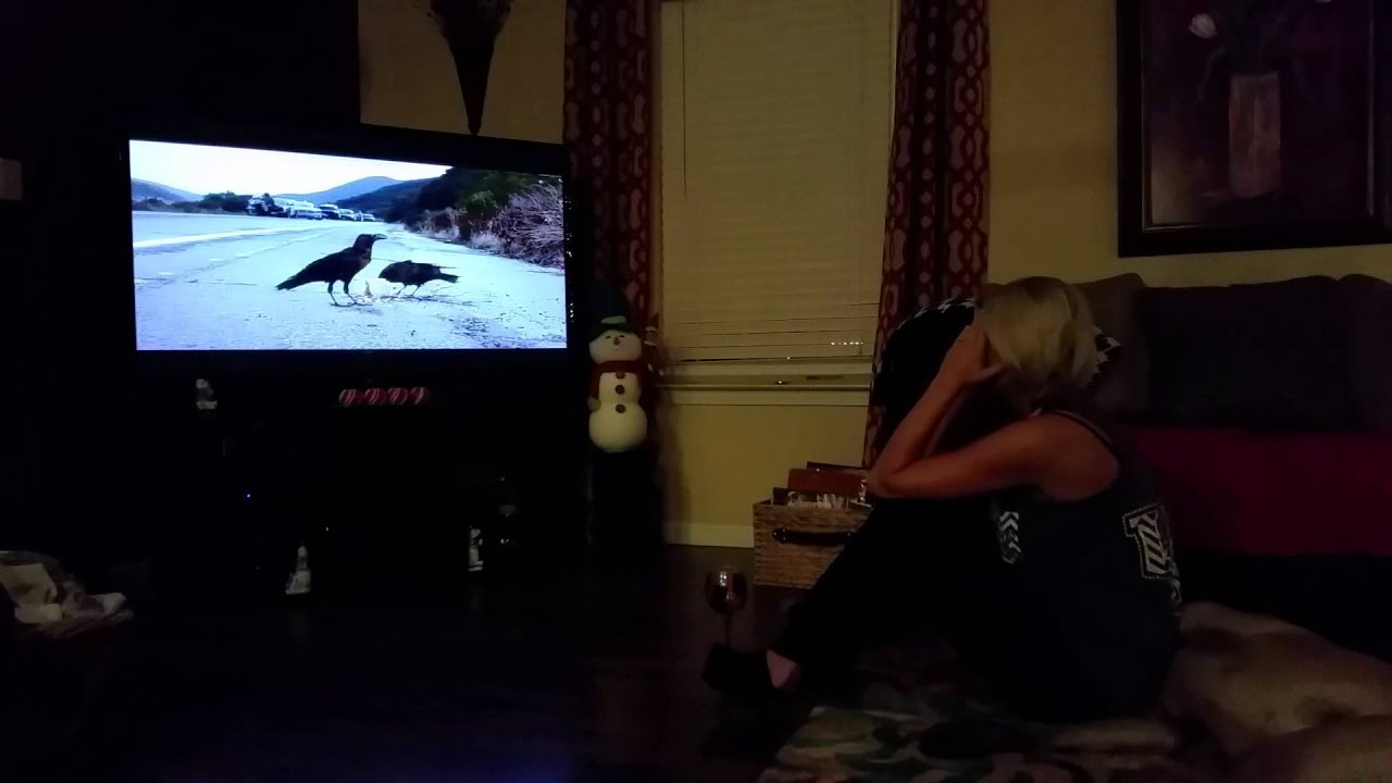 Download Sons of Anarchy series finale girlfriend reaction