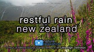 """Restful Rain in New Zealand"
