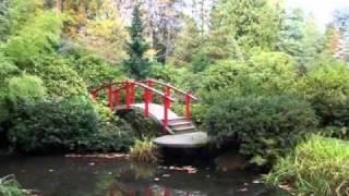 Волшебная мелодия - Бамбуковая флейта thumbnail