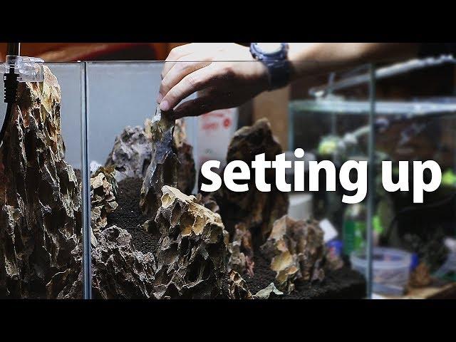 ??????????????????????setting up aquascape