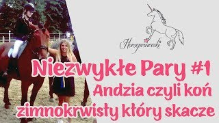 Horseprinceski - Niezwykłe Pary #1 - Andzia czyli koń zimnokrwisty który skacze