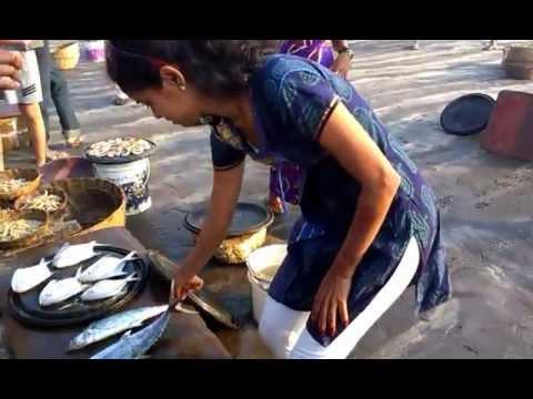 Fish Auction at Harne Bandar Kokan