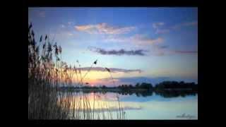 NEVZAT ŞENOL' un sesiyle, Yasemin Göksu ve Akşamlar