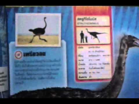 สตรูทิโอไมมัส(Struthiomimus)