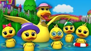 Lima bebek kecil | sajak anak-anak | Nursery Songs | Five Little Ducks