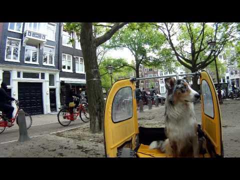 Nostalgie-Trip AMSTERDAM 2013 - Clip 5: City by bike & dog