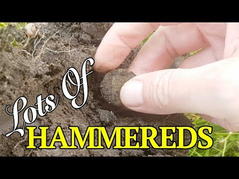 Metal Detecting The 1600's Village (240)