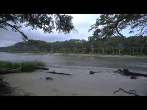 Estuaries: Where The River Meets The Sea