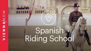 Spanish Riding School Vienna (Spanische Hofreitschule)  - VIENNA/NOW Sights
