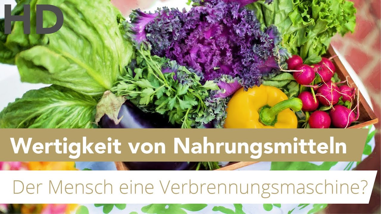 Der Mensch als Verbrennungsmaschine // Wertigkeit von Nahrungsmittel? // Gesunde Ernährung