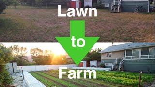 How I convert lawns into profitable URBAN FARMS!