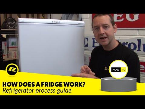 How A Fridge Works
