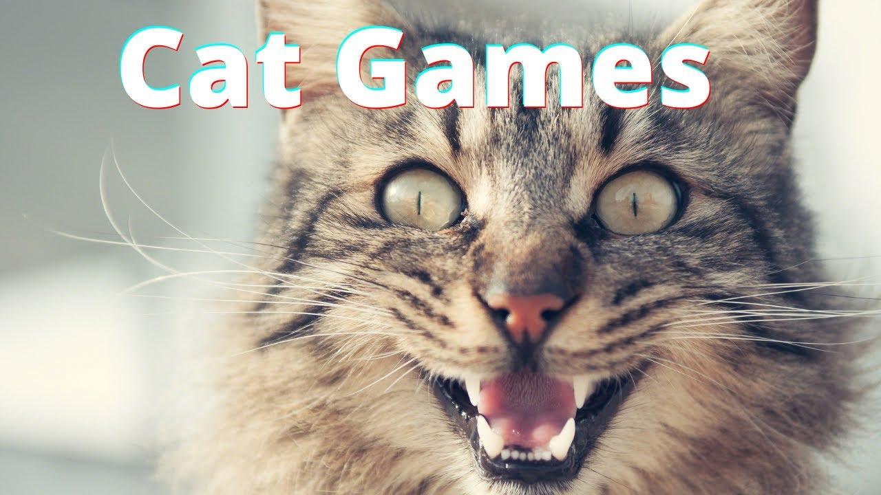 Juego Para Gatos - Ratones Para Gatos Corriendo en Pantalla