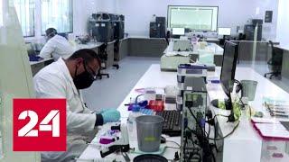 Выявлены осложнения: AstraZeneca остановила испытания вакцины против COVID-19 - Россия 24