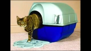как использовать лоток для кошек с решеткой
