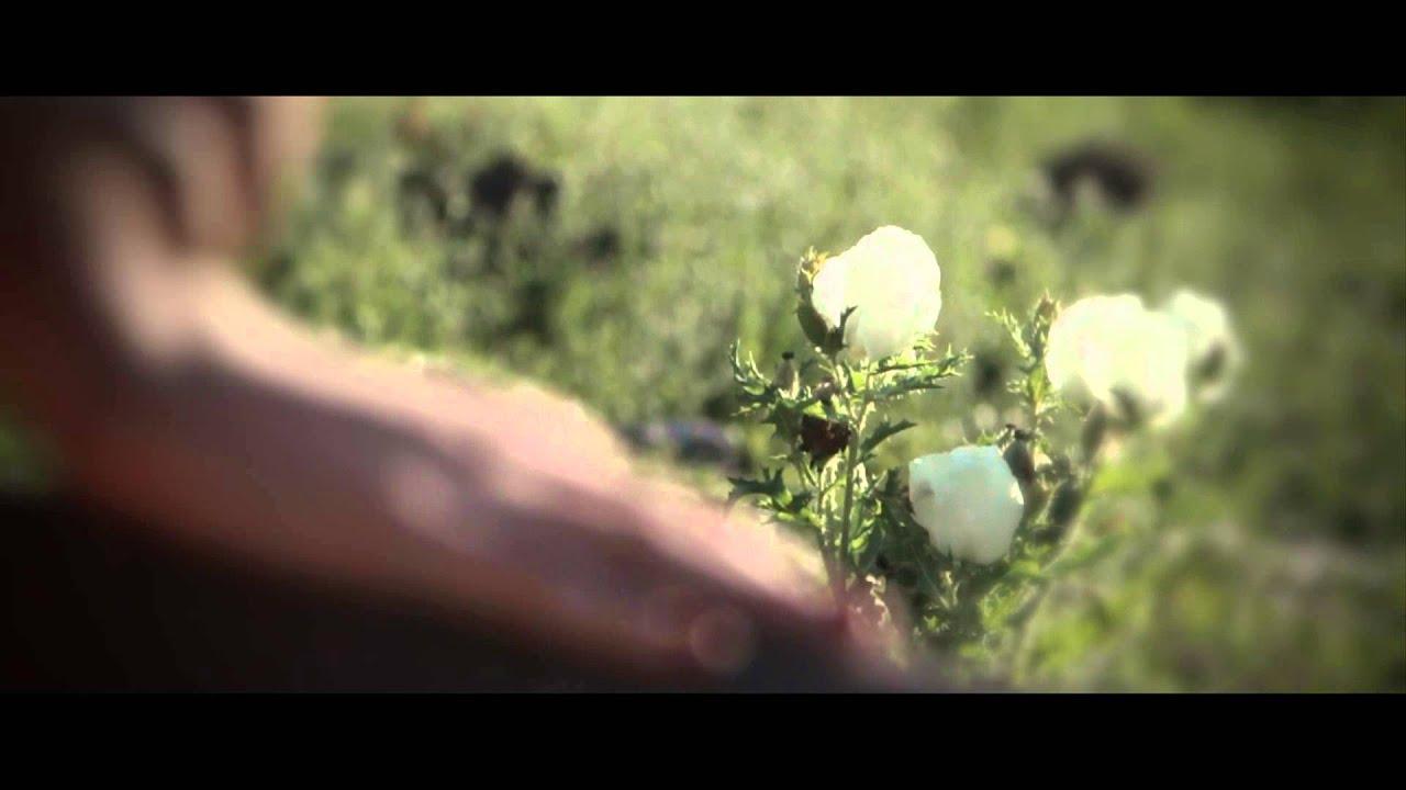 Jesse & Joy - Me Quiero Enamorar (Video Oficial)