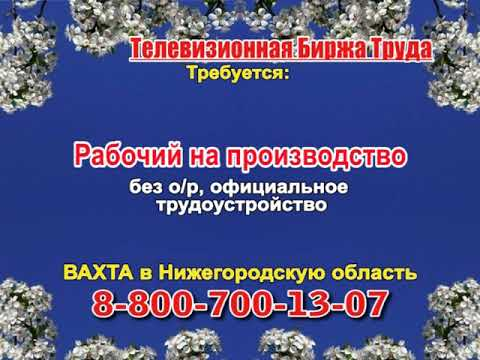 21 марта _13.15_Работа в Нижнем Новгороде_Телевизионная Биржа Труда