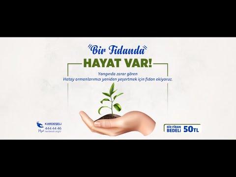 Türkiye'nin Ciğerleri Yanıyor!