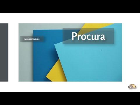 Procura (Intro - MD)