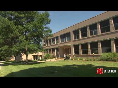 Syracuse School Project