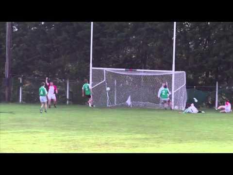 Top 10 Kilcummin minor goals 2011 In County Championship
