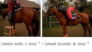 Comment monter a cheval / Descendre de cheval
