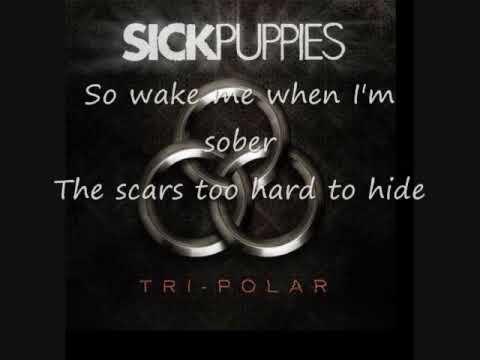 Sick Puppies - Should've Known Better (lyrics)