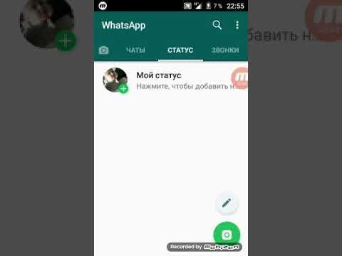 Как искать других людей в Whatsapp