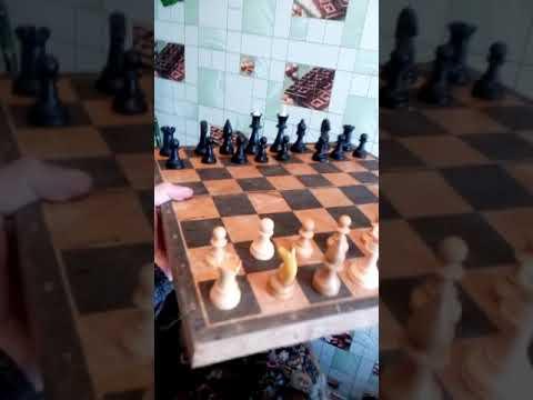 Прикол с шахматами,гонит тип,ржака,пародия павлика наркомана