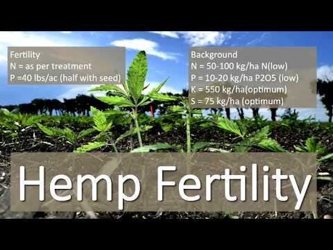 Is Hemp Right For Your Farm? The Answer may be Surprising! – Farming Smarter Conference 2017