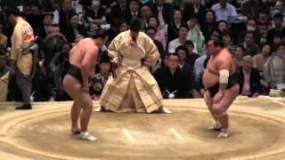 勢 vs 豊響 の取組。2015春場所6日目。現地オリジナル撮影。 Grand Sumo...