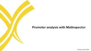 Promoter analysis with MatInspector