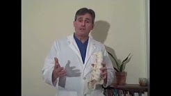 Orthopedic Surgeon, Albany GA  for Herniated Disc & Other Issues