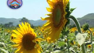 Aatma Parishuddatmuda - Hosanna Ministries 2013 Song