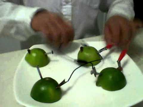 Sec 202 enciende una bombilla utilizando limones 2 youtube for Bombilla led se enciende y se apaga