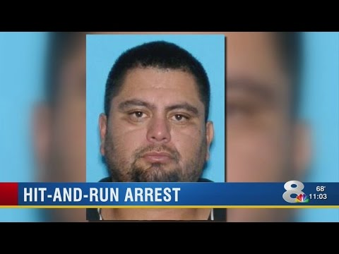 Will Ruskin hit-and-run suspect's relatives face charges?