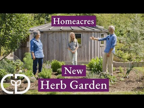 Growing and using herbs, with Jekka McVickar