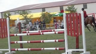 Concursul de sarituri cu cai din Ungaria, Julia, MD Horses