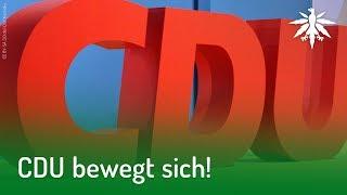 CDU bewegt sich!   DHV-News #178