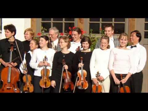 Fugato für Streichorchester von Wei Guo Mao  毛为国作曲  演奏:Streichorchester inTONation