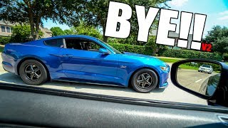 TAKING 5.0 MUSTANGS TO GAPPLEBEE'S in the GTR!